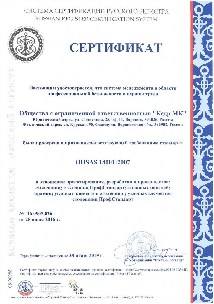 заказать OHSAS 18001 в Выборге
